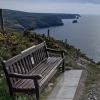 beeny bench