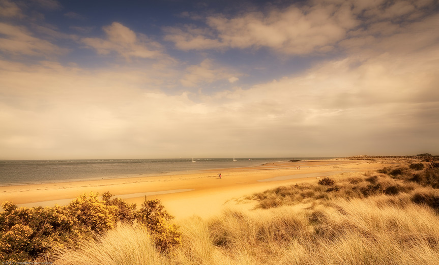 Image of the sun on the beach at Studland Point in Dorset.