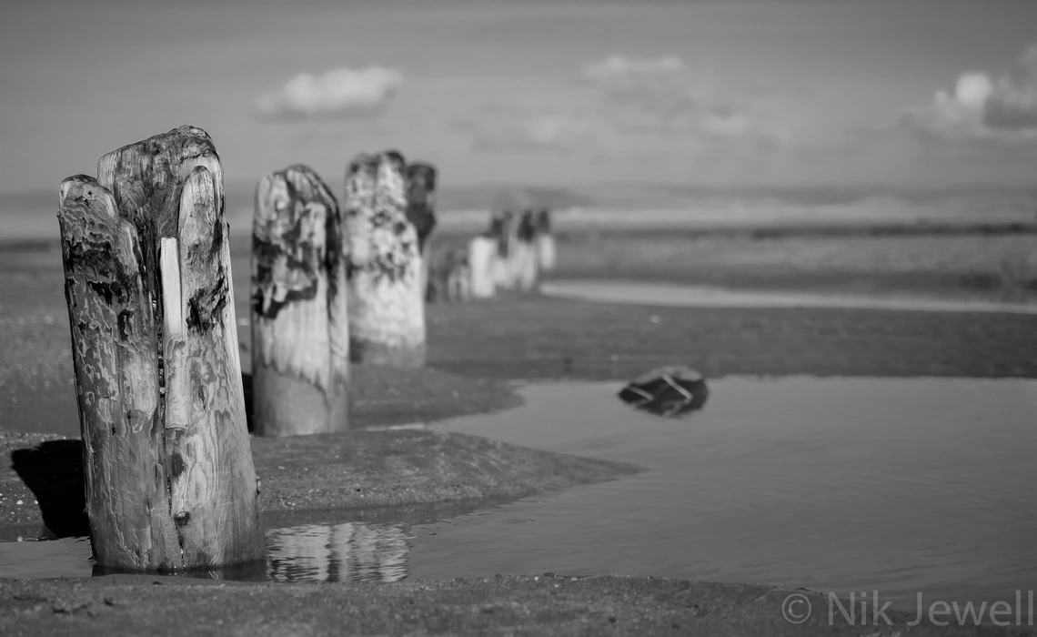 A line of posts exposed by winter storms on the beach at Westward Ho!, North Devon