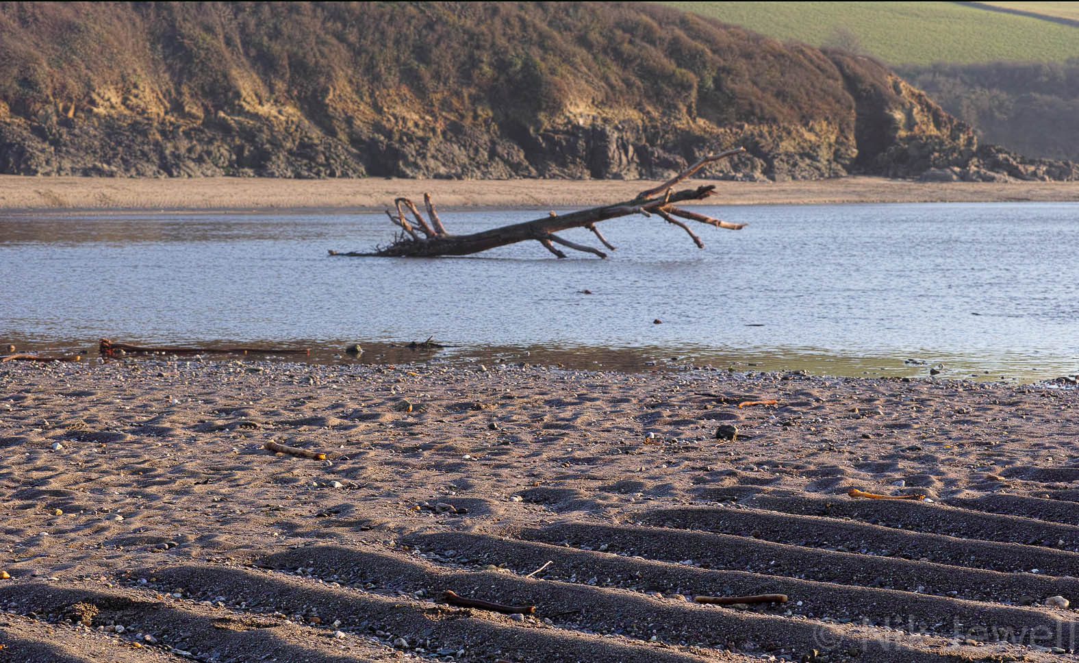 Tree trunk in the water behind grooved sand in the Erme Estuary in the South Hams of Devon