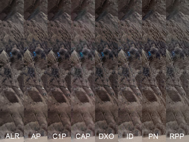 Image showing 1:1 slithers of high ISO noise reduction on rocks in a RAW Converters Comparison of Lightroom, Aperture, Capture One Pro, Aftershot Pro, DXO Optics Pro, Irident Developer, Photo Ninja and Raw Photo Processor