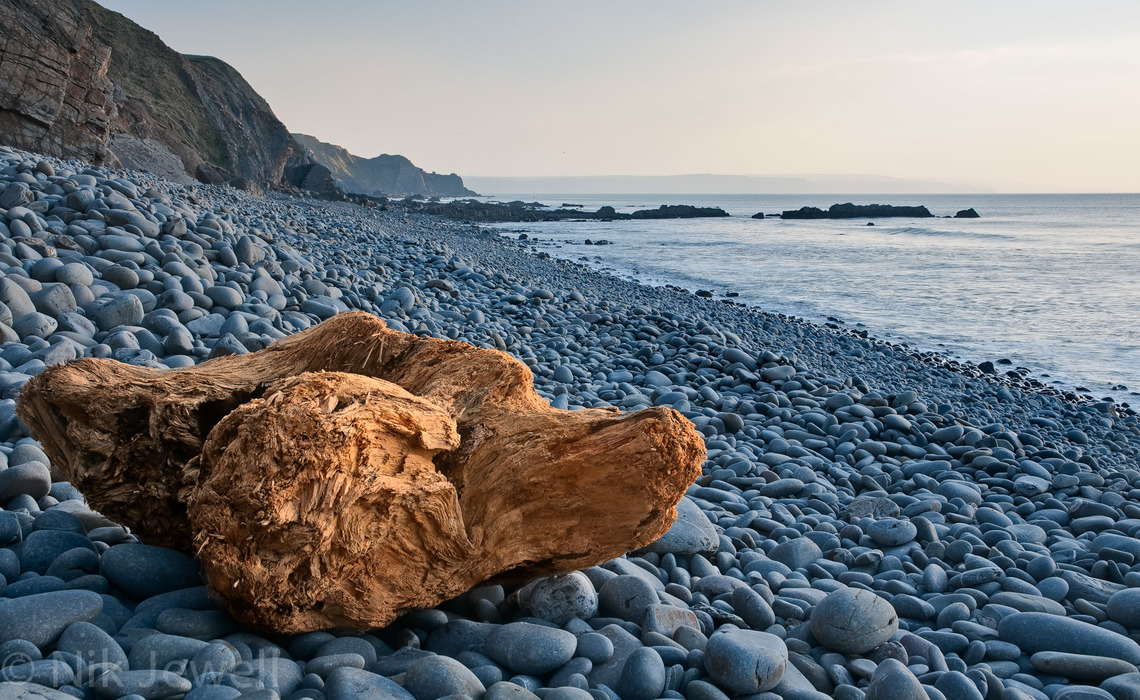 Image of large driftwood on the beach at Sandymouth