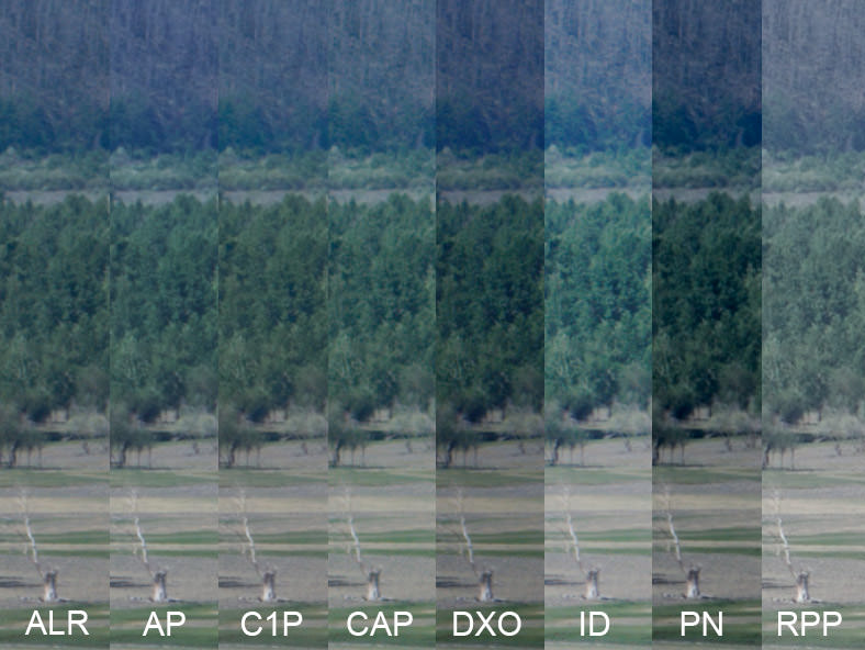 Image showing 1:1 slithers of unsharpened views of a distant scene in Arkhangai, Mongolia, to illustrate the resolution of fine details in a RAW Converters Comparison of Lightroom, Aperture, Capture One Pro, Aftershot Pro, DXO Optics Pro, Irident Developer, Photo Ninja and Raw Photo Processor converted in Lightroom, Aperture, Capture One Pro, Aftershot Pro, DXO Optics Pro, Irident Developer, Photo Ninja and Raw Photo Processor